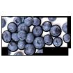 Butter Braid - Blueberry Cream Cheese